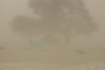 BoDEx Chicha dust